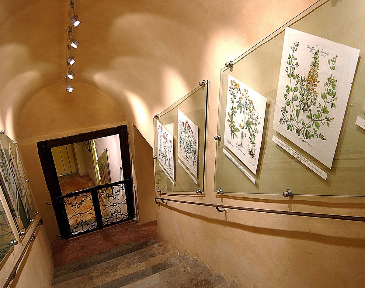 The entrance and the stairwell