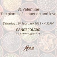 St. Valentine – The plants of seduction and love